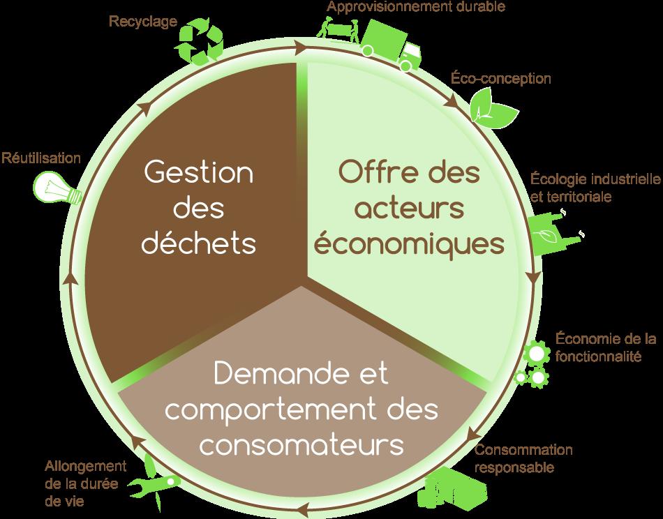 Économie circulaire Infographie by COResponsable Conseil